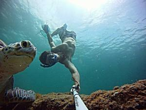 Kevin GoPro swim with green turtles!