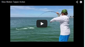 EPIC Tarpon Battle in Slow Motion with Capt. Bryon & Capt. Greg