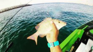 Hcraft skiff life fishing boating articles for Joy fishing tackle