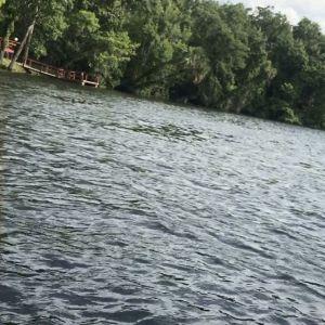 @pescado_adventures @ttstrouse @jen_haney4 #fishing #penn #sup #gulfcoast #insho…
