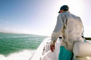 Chasing horizons  ________________________________  …