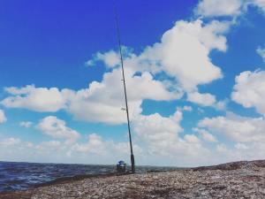 Daily dose of fishing and vitamin Sea!  …