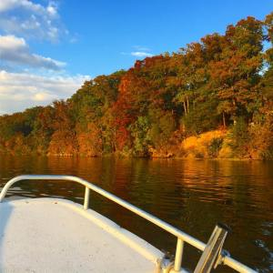 A little  boat ride on the               …