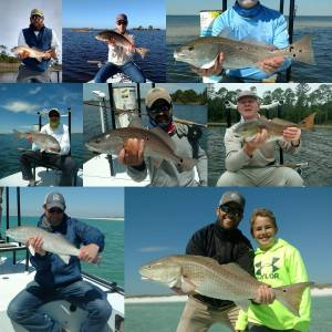 If casting to tailing redfish in crystal clear skinny water or cruising our beau…