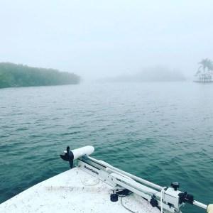 Foggy as fuq at San Carlos bay Friday.   …