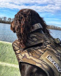 Looking back on my first duck season like • • •                 …