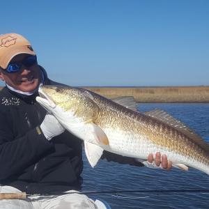 First Louisiana bull redfish
