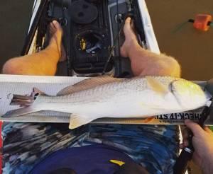 Tournament day fishing…. lol always one.   …