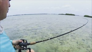 Bending rods with Boca Chica  – – – –  …