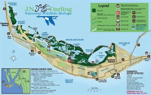 We officially have our permits to run charters in Ding Darling Wildlife Refuge! …