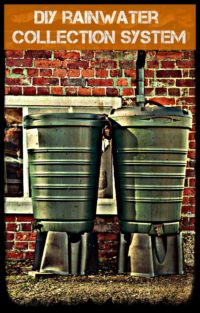 RainWater Collection System DIY