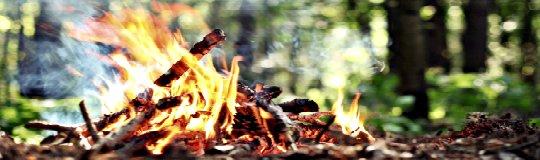 Fire Survival Skill