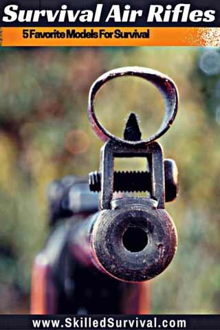 Survival Air Rifle