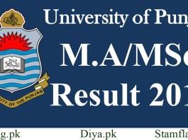 Punjab University Pu Ma Msc Result 2019