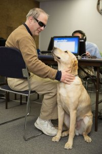Nathan Brannon with his guide dog, Mozart, works on our Usability and Compliance team