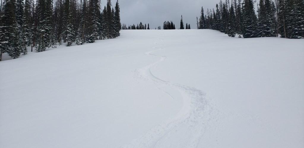 Skin & Ski
