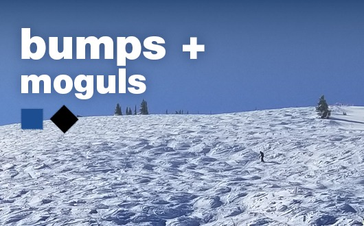 Bumps + Moguls (Ages 16+)They really are fun! Take this clinic and see for yourself!