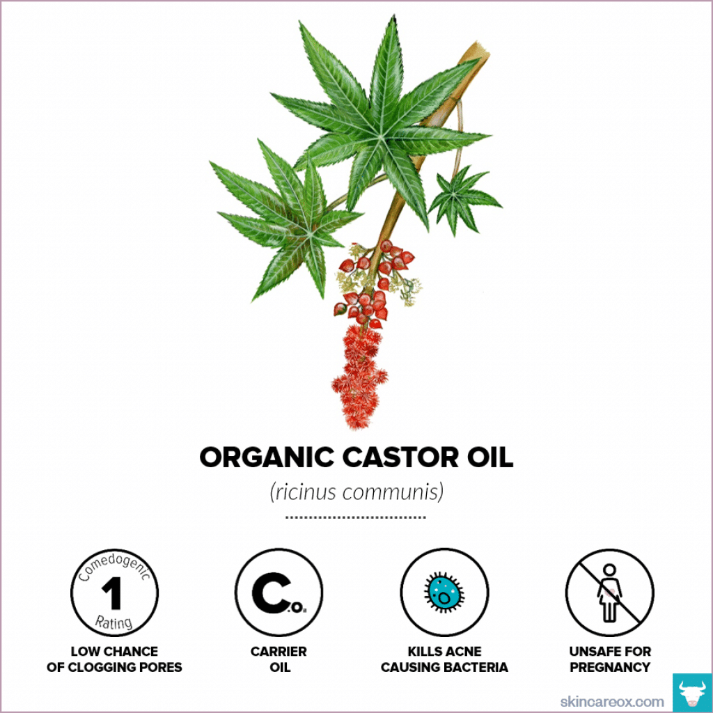 Organic skin care oils. Organic castor oil infographic with comedogenic rating, safety information, and useful tips.