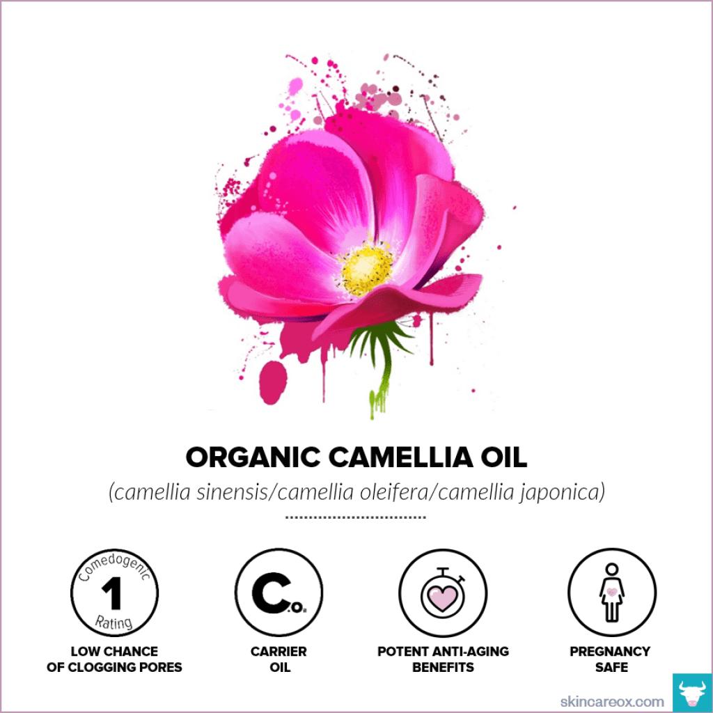 Organic Camellia Oil for Skin Care - Skin Care Ox