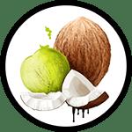 Organic Coconut Oil_Organic Deodorant Ingredients