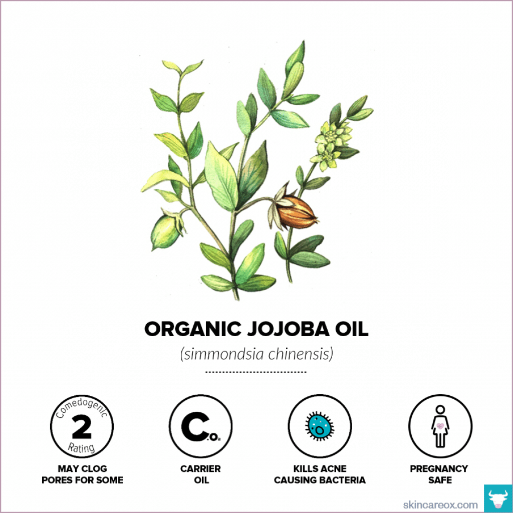 Organic Jojoba Oil for Skin Care - Skin Care Ox