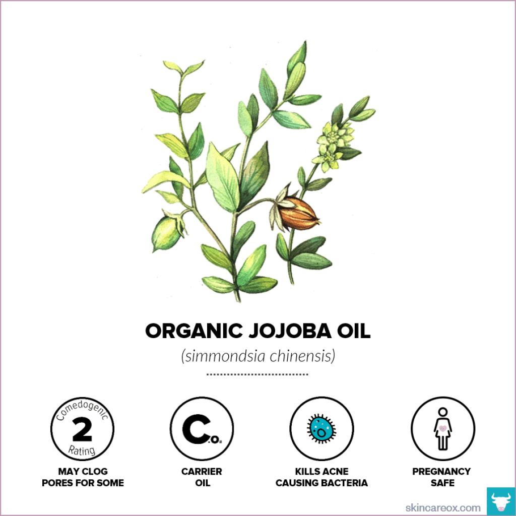 Organic Jojoba Oil for Skin Care - Skin Care Ox