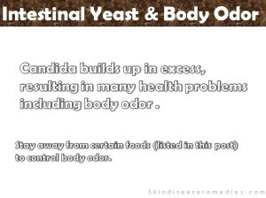 Candida (Yeast) and Body Odor