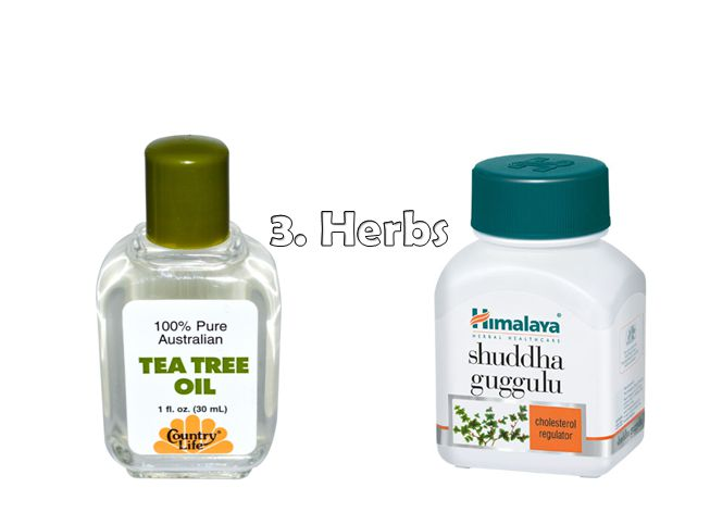 Image Result For Tea Tree Oil And Aloe Vera Gel For Acne