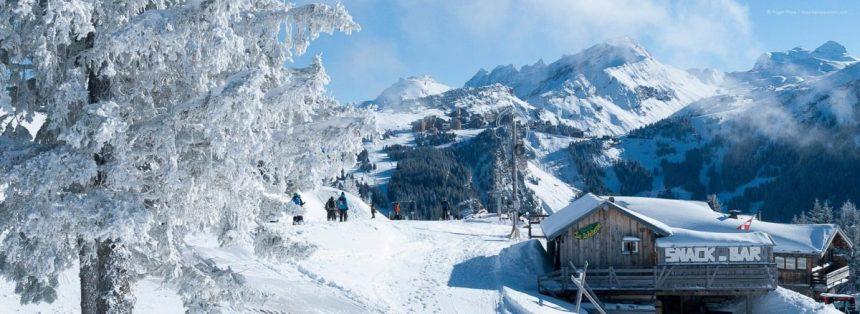 Skiology Christmas