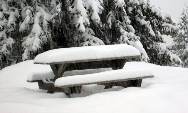 Ski Phoenix Mountain 12