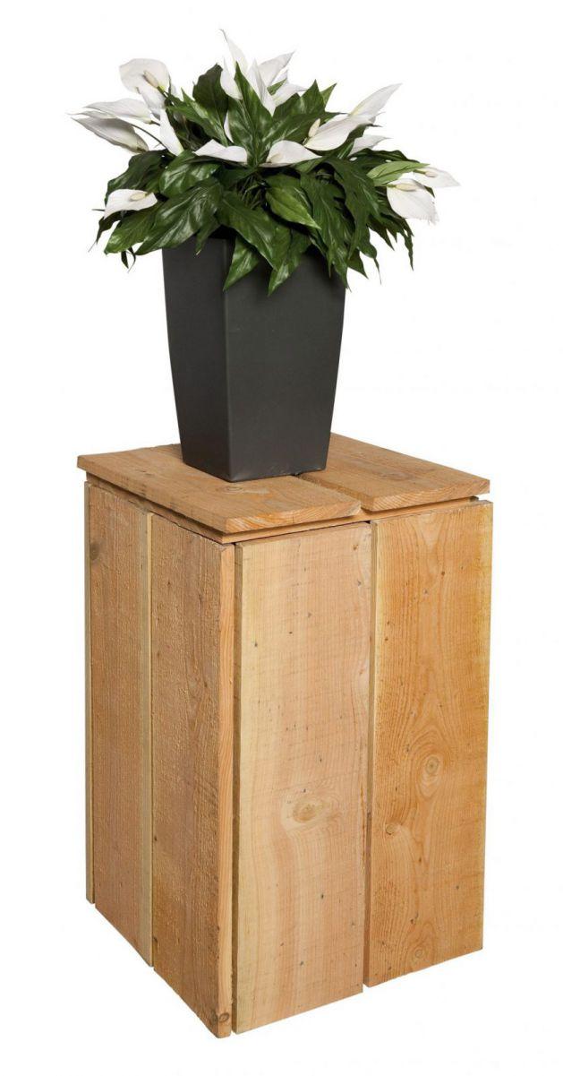 Plantenzuil douglas