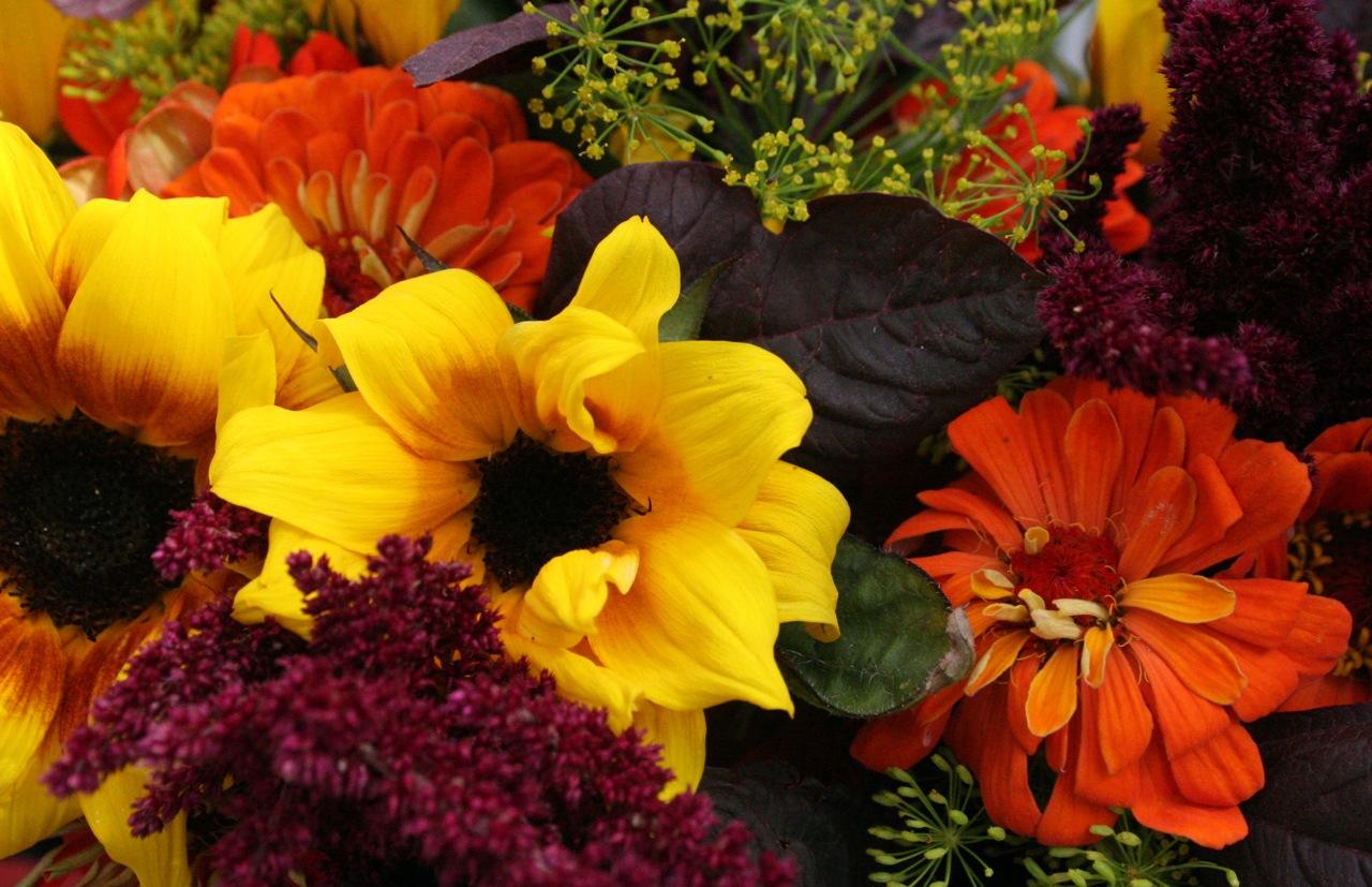 Fall River Florist