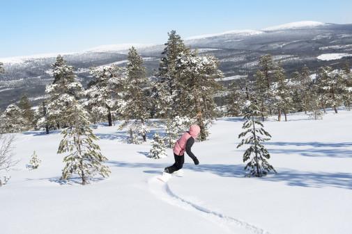 Stöten kåret til årets svenske skianlæg