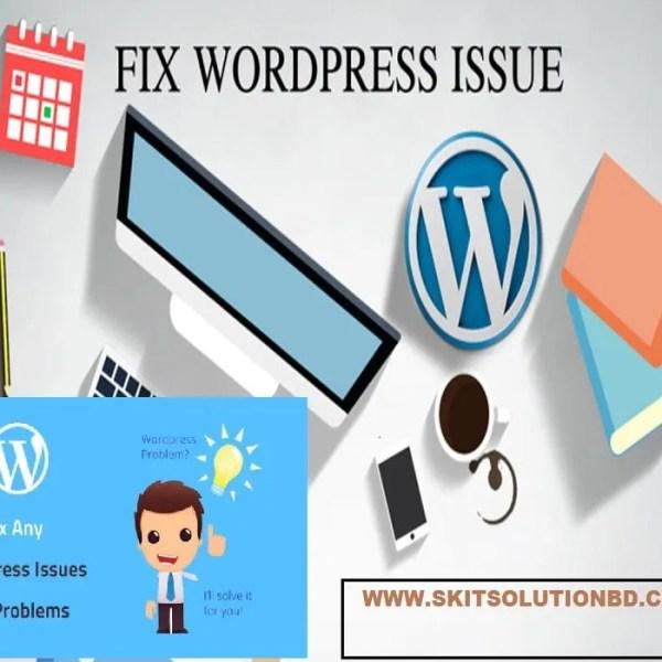 We will fix WordPress website Problem
