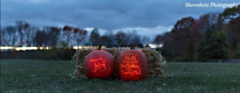 Carved Pumpkins 2