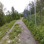 Vegen nedafor Arktisk-biologisk