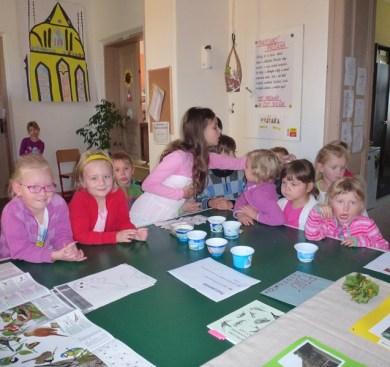 Den ekoškol - ptačí jídelníček