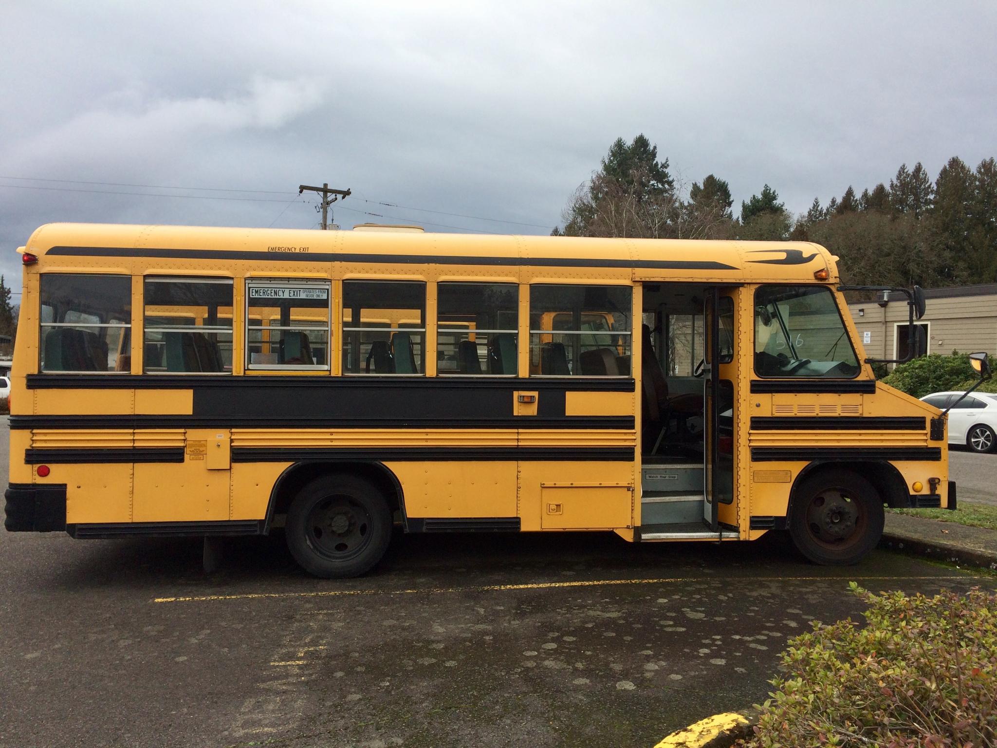 Eva 2001 Blue Bird Chevy Mini Bird School Bus