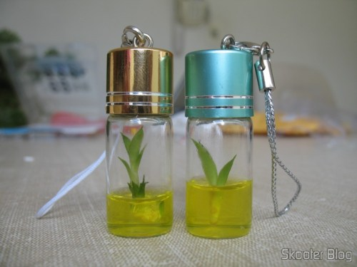 Keychain Lucky Bamboo Plant, Real and culturable in a flask