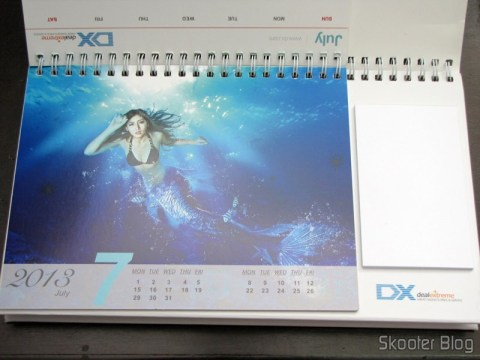 Desktop Calendar with Coupons for Discount 12 Months DX 2013 (DX 2013 Desk Calendar with 12 Months' Coupon Codes) - Month of July