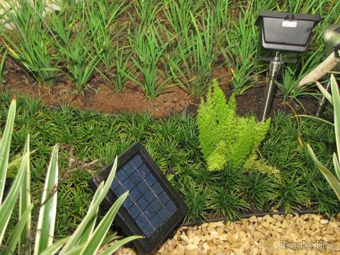Solar reflector panel 30 Solar LED lamps 2W 7000K 200LM waterproof (Waterproof Solar 2W 7000K 200lm 30-LED Flood Cool White Light Project Lamp – Black), installed