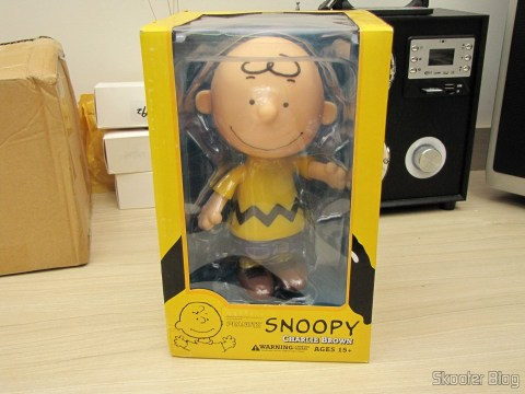 Charlie Brown - Action Figure, on its packaging