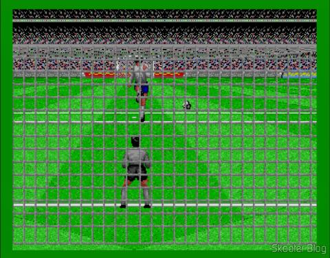 Visão do goleiro nos penaltis