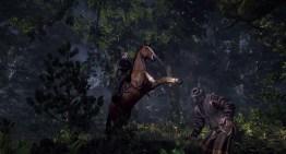 صدور صور جديدة ل The Witcher 3: Wild Hunt
