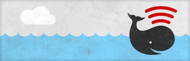 banner-772x250(16)