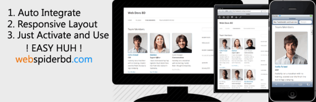 custom team manager WordPress
