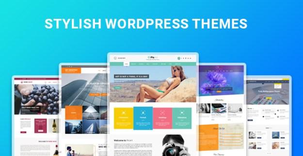 stylish WordPress themes