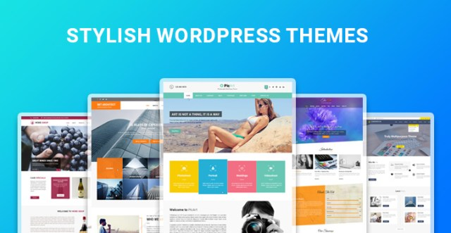 stylish WordPress themes