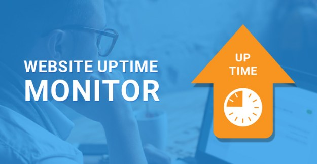 WordPress website uptime monitor