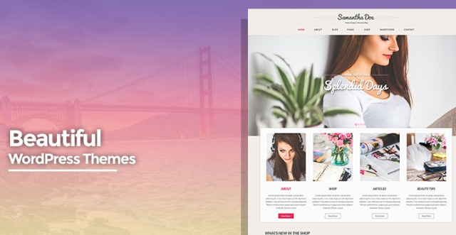 beautiful-wordpress-themes